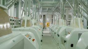 Macchinario elettrico del mulino per la produzione della farina di frumento Attrezzatura del grano video d archivio