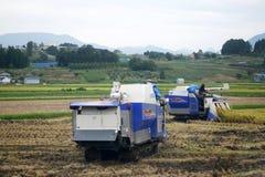 Macchinario giapponese di uso degli agricoltori per raccogliere riso Fotografie Stock