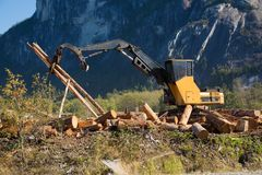 Macchinario industriale del sito di silvicoltura che waorking vista scenica Fotografia Stock Libera da Diritti