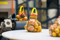Macchinario nella vendita all'ingrosso della verdura e della frutta immagine stock