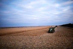 Macchinario raccolto di file e di raccolta del raccolto del grano Immagine Stock