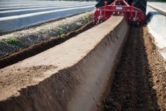 Macchine di agricoltura sul giacimento dell'asparago Fotografia Stock Libera da Diritti