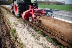 Macchine di agricoltura sul giacimento dell'asparago Fotografie Stock Libere da Diritti