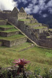 Macchu Picchu, Peru. Royalty Free Stock Photography