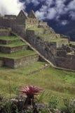 Macchu Picchu, Peru. Royalty Free Stock Photography