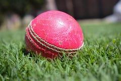 Macdo a tiré d'une boule sur une herbe verte photographie stock libre de droits