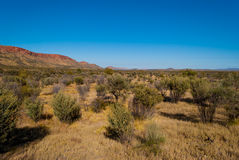 MacDonnell Ranges, Northern Territory Royalty Free Stock Images