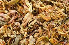 Mace background. Mace spice is aromatic ingridient that adds flavour and aroma in any sweet/sour gravy stock images