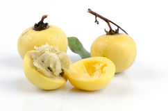 Mace, noz-moscada (fragrans Linn de Myristi Ca) imagens de stock royalty free