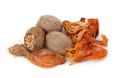 Mace and nutmeg Stock Image