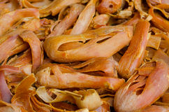 Mace spice Mace. Or Javitri Spice Royalty Free Stock Photos