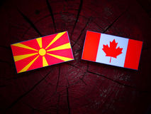 Macedońska flaga z kanadyjczyk flaga na drzewnym fiszorku odizolowywającym obraz stock
