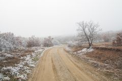 Mountain road. Macedonia. Gravel mountain road in the fog. Frozen trees and grass Royalty Free Stock Images