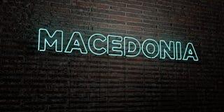MACEDONIA - señal de neón realista en fondo de la pared de ladrillo - 3D rindió imagen común libre de los derechos Foto de archivo