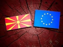 Macedonian flag with EU flag on a tree stump isolated. Macedonian flag with EU flag on a tree stump Stock Photo