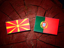 Macedonian flag with Portuguese flag on a tree stump isolated. Macedonian flag with Portuguese flag on a tree stump stock illustration