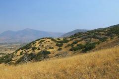 Macegonia, Pelagonia地区, Prilep城镇,酵母酒蛋糕山 库存图片