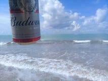 MACEIO, AL, БРАЗИЛИЯ - 12-ое мая 2019: Пиво Budweiser холодное и красивые небо и море позади стоковая фотография