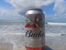 MACEIO, AL, БРАЗИЛИЯ - 12-ое мая 2019: Пиво Budweiser холодное и красивые небо и море позади стоковые изображения rf