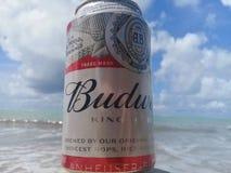 MACEIO, AL, БРАЗИЛИЯ - 12-ое мая 2019: Пиво Budweiser холодное и красивые небо и море позади стоковое фото