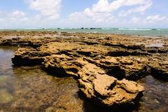 Maceio Beach Rocks Royalty Free Stock Photo