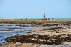Free Maceio Lighthouse Royalty Free Stock Photo - 20564375