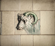 Macellaio Shop Goat Tile Immagine Stock