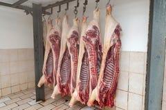 Macello di un maiale, carcasse dei maiali, carne di maiale del prosciutto immagini stock libere da diritti