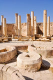 Macellum (de markt), Jerash (Jordanië) Stock Foto