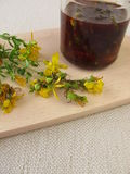 Maceration from St. John's wort flowers in oil Royalty Free Stock Images