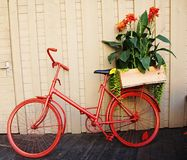 Maceta de la bici Fotos de archivo libres de regalías