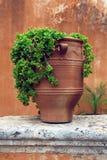 Maceta de la terracota del griego clásico Foto de archivo libre de regalías