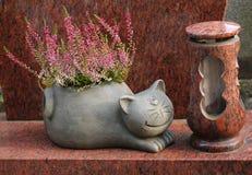 Maceta del gato con el brezo Foto de archivo libre de regalías