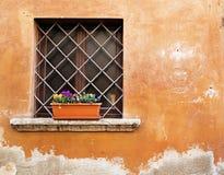 Maceta en una ventana con la parrilla Imágenes de archivo libres de regalías