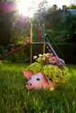 Maceta la forma de cerdo en hierba Fotografía de archivo