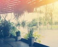 Maceta que cuelga y que adorna el jardín tropical Imagen de archivo