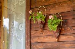 Macetas cerca de la ventana Imagen de archivo libre de regalías