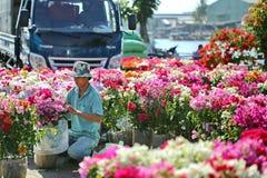 Macetas vietnamitas del antebrazo del granjero para la venta Imagen de archivo