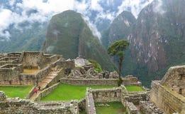 Mach Picchu w Peru Zdjęcie Royalty Free