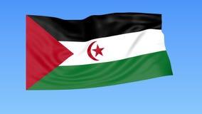 Machać flaga Sahrawi Arabska Demokratyczna republika, bezszwowa pętla Dokładny rozmiar, błękitny tło Część wszystkie kraje ustawi royalty ilustracja