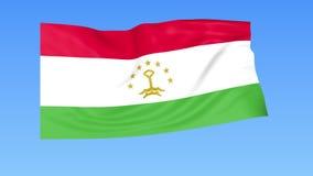 Machać flaga Tajikistan, bezszwowa pętla Dokładny rozmiar, błękitny tło Część wszystkie kraje ustawiający 4K ProRes z alfą ilustracja wektor