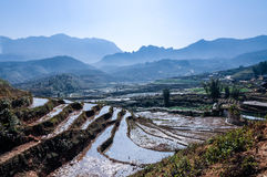 Macha村庄, sapa,越南 免版税库存图片