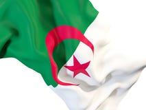 Machać flaga Algeria royalty ilustracja