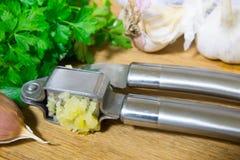 Machacamiento del ajo para añadir al plato Ajo entero y tajado en una tabla de cortar hecha de roble natural Perejil fresco fotos de archivo libres de regalías