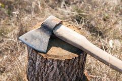 Machado colado em um log da madeira Fotos de Stock Royalty Free