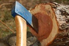 Machado na árvore cortada Imagens de Stock