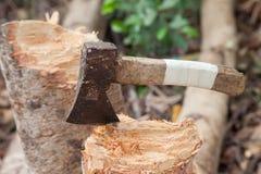 Machado na madeira Fotos de Stock