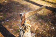 Machado velho colado em um coto de árvore foto de stock