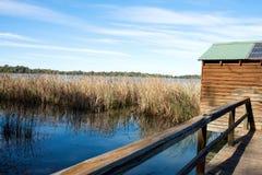 Machan in Wetland, Kings Billabong, Australia. Royalty Free Stock Image