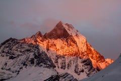 Machapuchare al tramonto fotografie stock libere da diritti